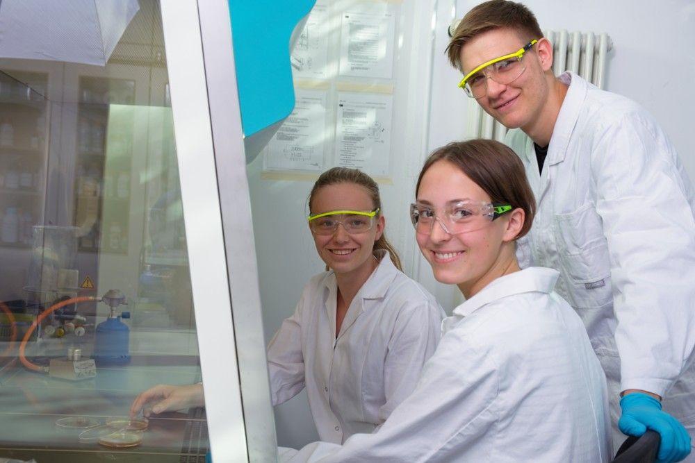 Biotechnologie (BTG) - Laborarbeit