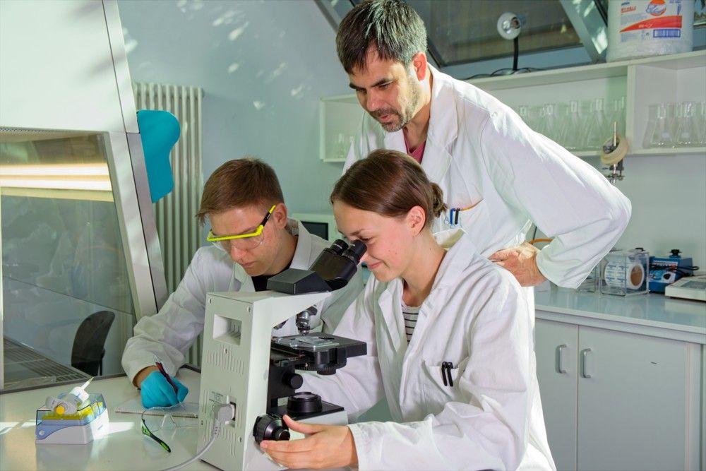 Biotechnologie (BTG) - Arbeit am Mikroskop