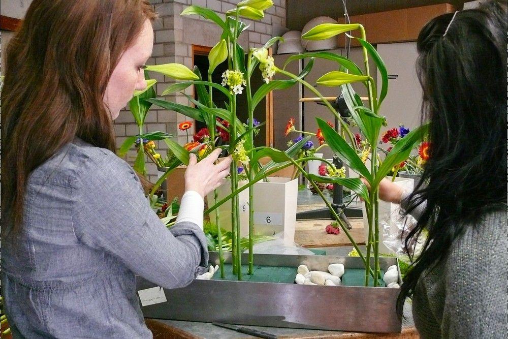 Floristin oder Florist (FL) - Versorgung von Pflanzen