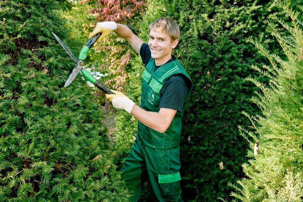 Landschaftsgärtner Berufsbild